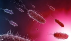 close up of microscopic bacteria in pink background, 3d illustration